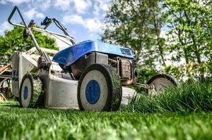 Sie haben Müll im Garten? Ein blauer Müllsack schafft Abhilfe!