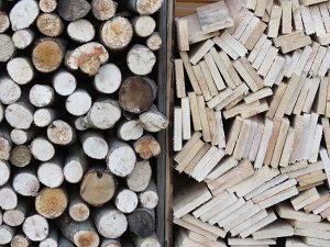 Holz lagern Holz entsorgen Abfallguru Mülltrennung